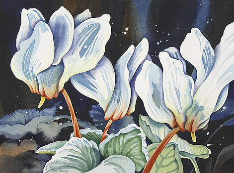 White Cyclamen by Joye Moon