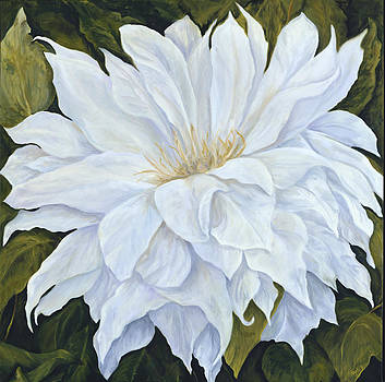 White Dahlia by Suzie Richey