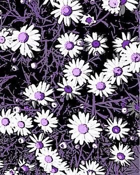 Sandra Foster - White Daisies Digital Art Work