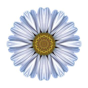 White Daisy I Flower Mandala White by David J Bookbinder