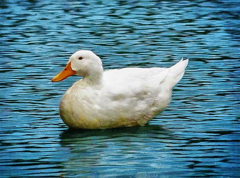 Ray Van Gundy - White Duck