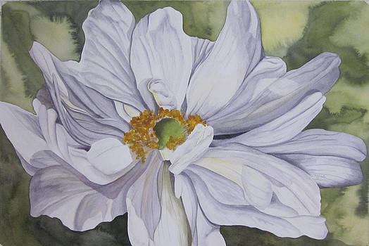 White Flower Companion by Teresa Beyer
