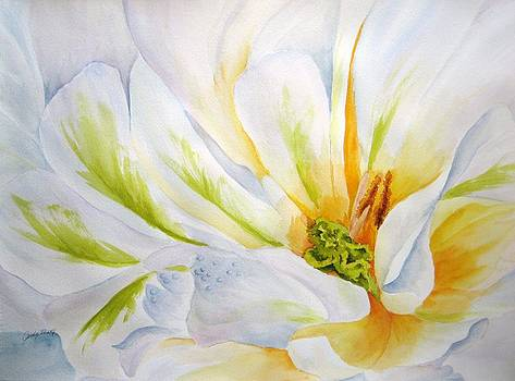 White Flower by Judy Meng