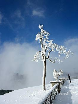 Gothicrow Images - White Freeze