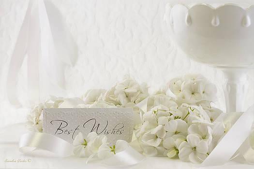Sandra Foster - White Geraniums Still Life Best Wishes