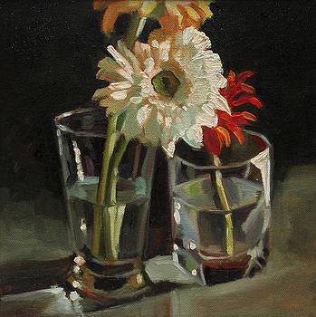 White Gerbera by Sangeeta Takalkar