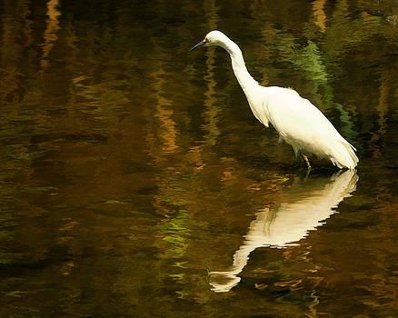 White Heron by Dick Wood