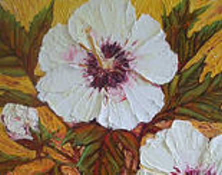 White Hibiscus by Paris Wyatt Llanso