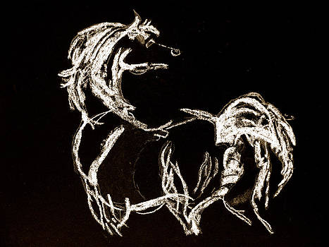 White Horse by Holly Wright