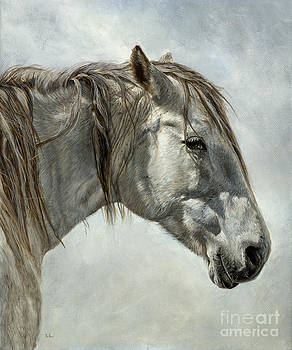 White Horse by True Image