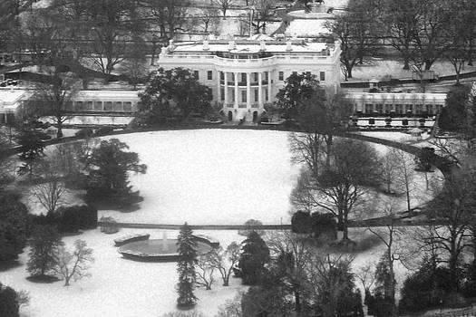 Leslie Cruz - White House Aerial