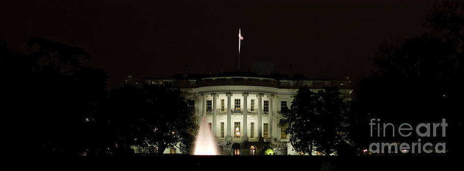 Tim Mulina - White House and Fountain