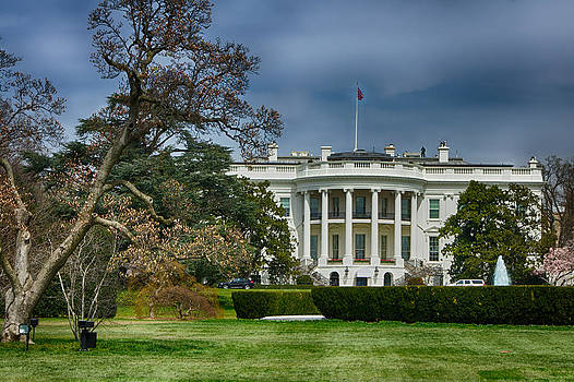 White House by Dheeraj Mallemala