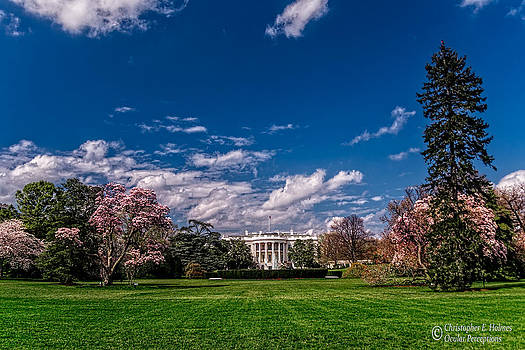 Christopher Holmes - White House Lawn in Spring