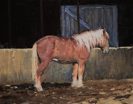 White house ranch by Greg Clibon