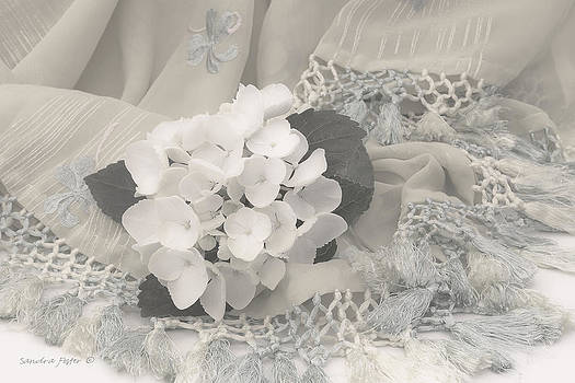 Sandra Foster - White Hydrangea Flower And Fringed Sari