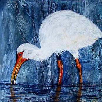 Susan Duxter - White ibis