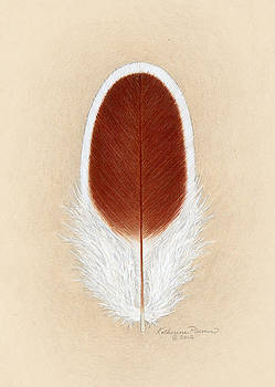 White Laced Red Cornish Feather by Katherine Plumer