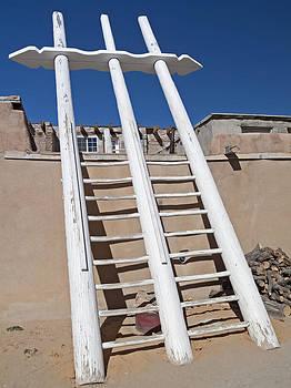 White Ladder by Jennifer Nelson
