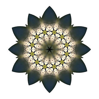 White Lily III Flower Mandala White by David J Bookbinder