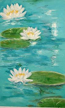 White lily by Onkar K