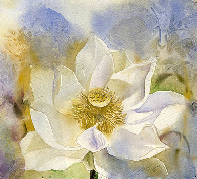 Alfred Ng - white lotus with blue