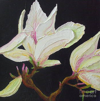 White Magnolia on Midnight Blue by Paris Wyatt Llanso