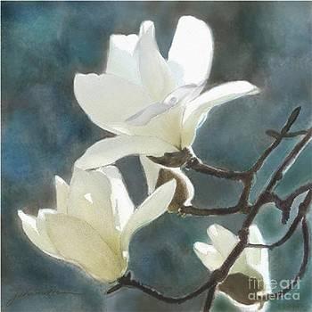 White Magnolia's One by Joan A Hamilton