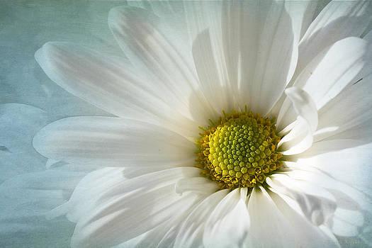 White Melody  by Marina Kojukhova