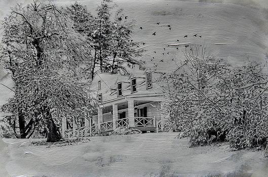 White Morning by Kathy Jennings