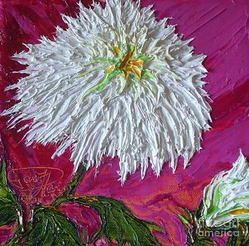 White Mum by Paris Wyatt Llanso