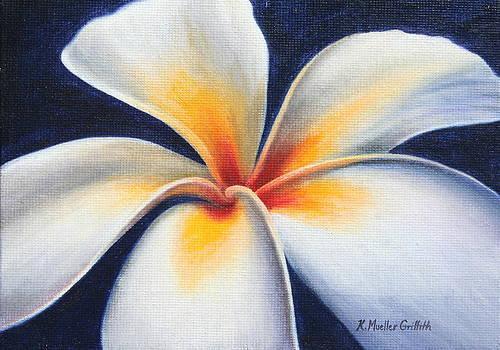 White Night Plumeria by Kristine Mueller Griffith