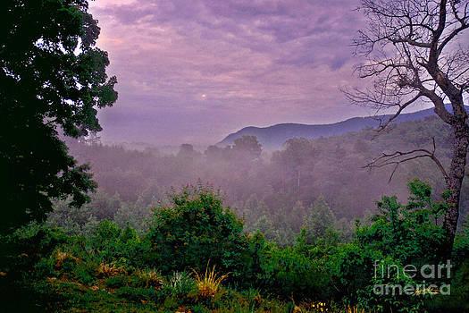 Jeff McJunkin - White Oak Mountain Saluda NC