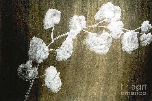 White Orchid by Fereshteh Stoecklein