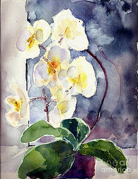 White Orchid by Toshiko Tanimoto