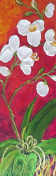 White Orchids on Red by Paris Wyatt Llanso