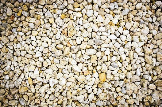 Tim Hester - White Pebbles