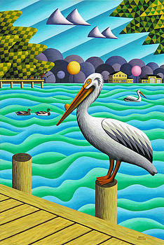 White Pelican by Bruce Bodden