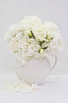 Sandra Foster - White Peonies In White Jug