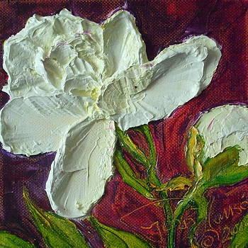 White Peony by Paris Wyatt Llanso