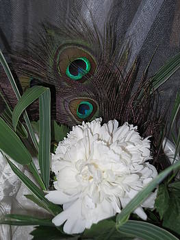 White Peony With Peacock Feathers by Pamela Funk