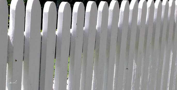 White Picket Fence 3 by The Art of Marsha Charlebois