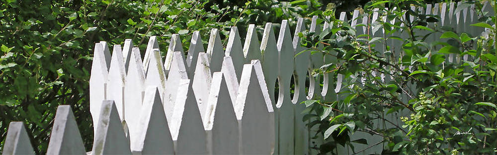 White Picket Fence 5 by The Art of Marsha Charlebois