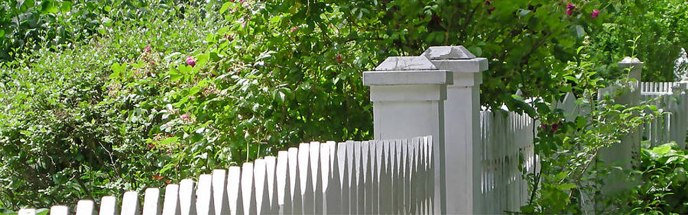 White Picket Fence 7 by The Art of Marsha Charlebois