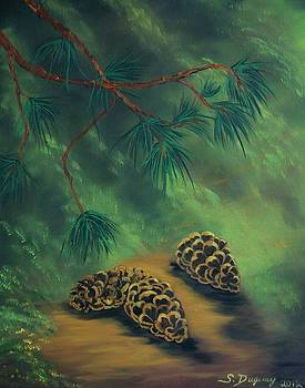 White Pine  and Cones by Sharon Duguay