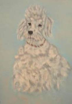 White Poodle by Pat Mchale