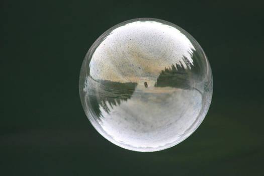 Cathie Douglas - White Reflections
