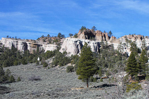 White Rock Terrane by Sharon I Williams