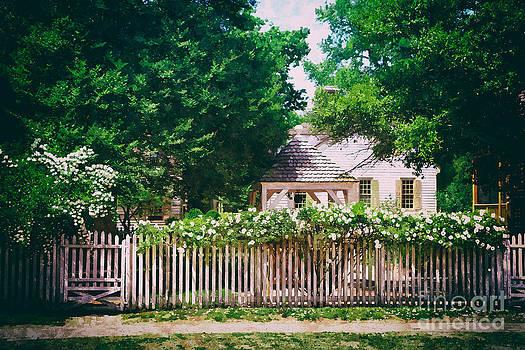 Shari Nees - White Rose Garden