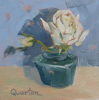 White Rose by Lori Quarton